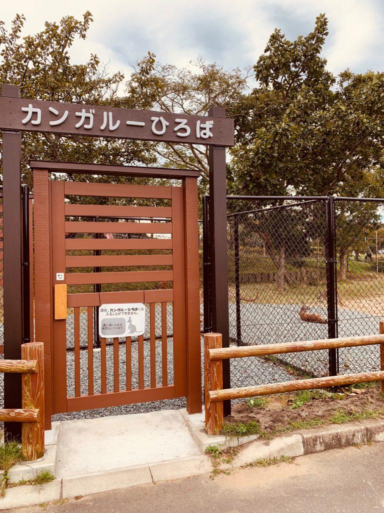 大森山動物園 カンガルーひろば