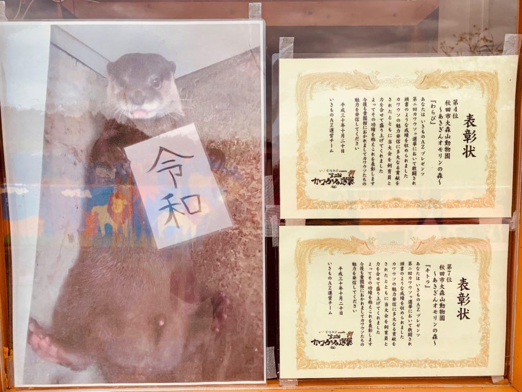 大森山動物園 カワウソゥ選挙